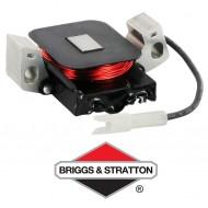 Alternateur BRIGGS & STRATTON - 691991