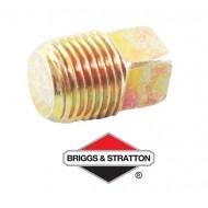 Bouchon BRIGGS & STRATTON - 794903