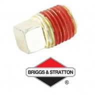 Bouchon BRIGGS & STRATTON - 691686
