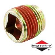 Bouchon BRIGGS & STRATTON - 691680