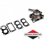 Carburateur BRIGGS & STRATTON - 792295