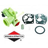 Carburateur BRIGGS & STRATTON - 795477
