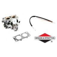 Carburateur BRIGGS & STRATTON - 845199