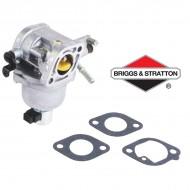 Carburateur BRIGGS & STRATTON - 699807