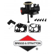 Carburateur Adp. BRIGGS & STRATTON - 494407