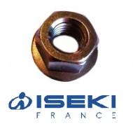Écrou d'Axe ISEKI (V360-260-012-00)