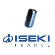 Plot de Sécurité ISEKI (8658-306-003-00)
