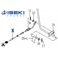 Câble Embrayage Sans Soufflet ISEKI (1593-332-051-20)