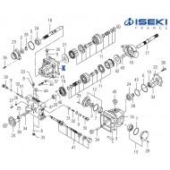 Joint ISEKI (1622-202-519-00)