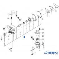 Pompe à Eau ISEKI (6213-610-004-50)